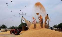 Govt hikes wheat MSP by Rs 110 per quintal