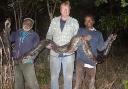 Florida enlists two snake hunters from India to catch