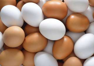 Eggs made of plastic find their way into Kolkata...