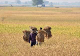 Analysts see farm loan waivers touching 2 per...