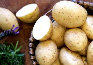 potatoes healthy or not - India TV