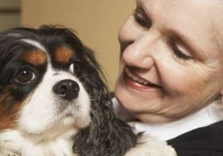 owning pets keep elderly active