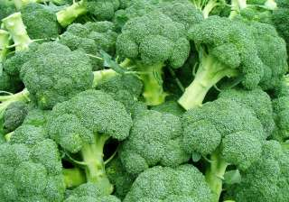 broccoli diabetes cure