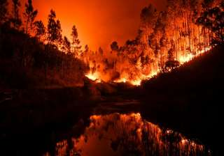 57 dead, 60 injured as forest fire rages in...