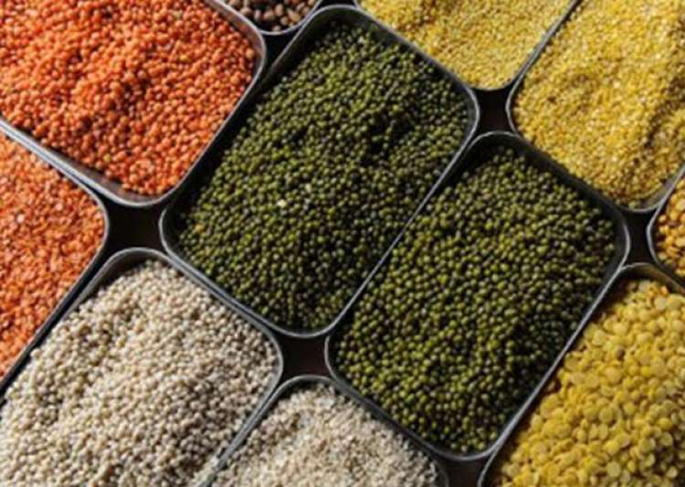 India seeks support from BRICS for pulses, oilseeds | India- India Tv