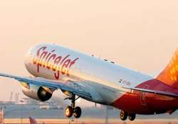 spicejet mum on sell out says exploring all options for