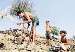 gujarat to raise daily wages of farm labourers by 25 per