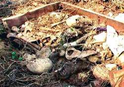 sacks containing skeletons found in bahraich