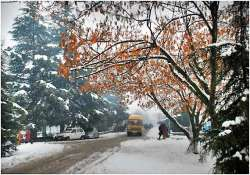 snowfall disrupts life on mughal road in kashmir valley