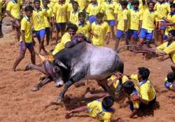 upa dmk govts to blame for including bulls cows in act