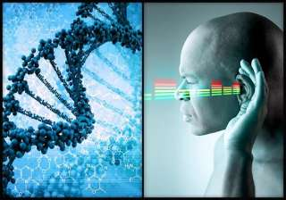 dna therapy boon for people with hearing loss see...