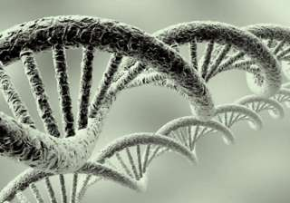 telomeres the new test for aging see pics - India...