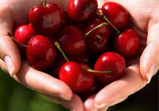 healthy benefits of cherries see pics - India TV