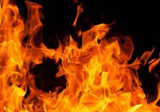 cat on fire starts new york apartment blaze two...