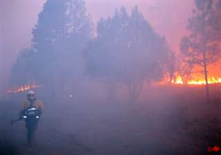 one dead nearly 350 homes burned in us wildfire -...