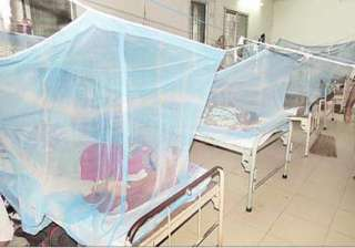 523 people test dengue positive in odisha - India...
