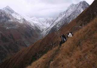 great himalayan national park gets unesco world...