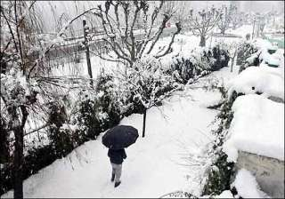 11 killed in avalanches house collapse in j k -...