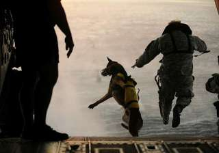 american canine officers in india for obama...
