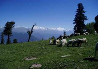 heavy rainfall likely in himachal - India TV