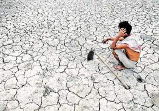 maharashtra expects farmer suicide cases to drop...