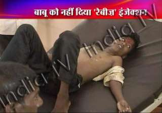 shame child dies in ap for lack of anti rabies...