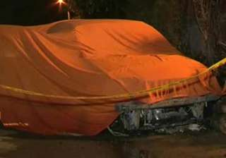 two brothers killed as car catches fire in delhi...