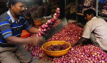 govt may ban onion exports to check price rise -...