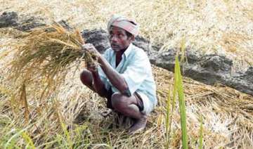 in a relief for farmers rbi asks banks to extend...
