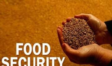 india to seek permanent solution to food security...