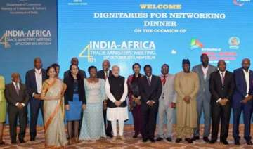africa huge investment potential for indian...