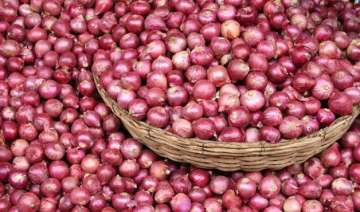 government okays bids for 1k tonnes of onion...