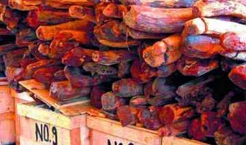 andhra earns rs.991 crore from e auction of red...