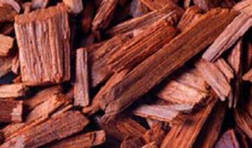 third phase of red sanders auction may fetch over...