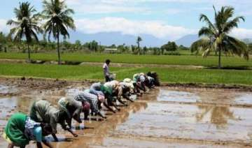 retail inflation for farm rural workers eases in...