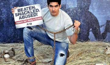 vijender singh asks nation to boycott animal...