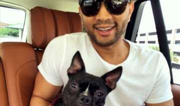 john legend and wife chrissy brought home an...