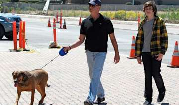 pierce brosnan supports neutering of dogs - India...