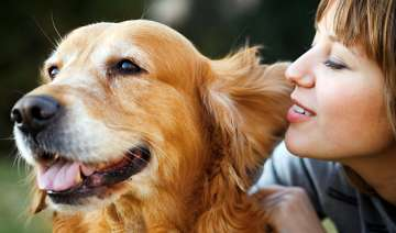 are pets better listeners - India TV