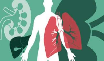 only one percent indians donate organs experts -...