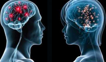 male female brains operate differently study -...