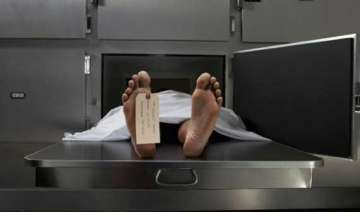 australian morgue refuses body cos it s too fat -...