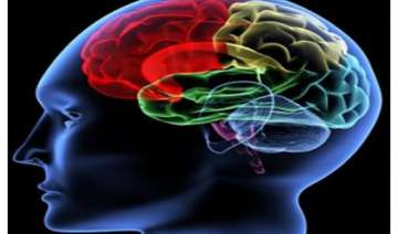 brain can shut off old habits - India TV