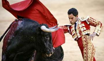 colombia s bullfight festival gets under way -...