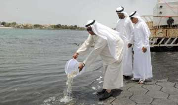 dubai municipality releases 70 000 baby fishes...