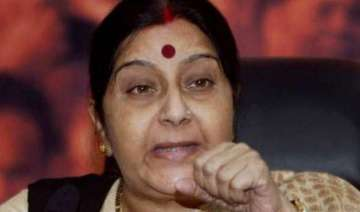 sushma swaraj meets counterparts from nepal sri...