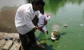 father dangles son above crocodile s jaws at...