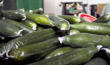 poisoned spanish cucumbers kill 9 nearly 300 ill...