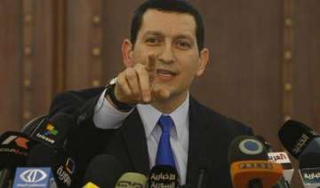 syria says it accepts arab plan for observer...