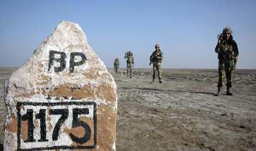 bsf nabs pakistani near lakhpat for crossing...